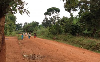 Tuesday: Field day for MAAMA project